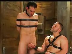 Strap -on, Handjob bondage, Gay bondage handjob, Bondage strap, Bondage handjob, Until cum
